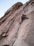 Rock Climbing Photo: Poodles Are People Too. 1/2012.  Photo: James Sull...