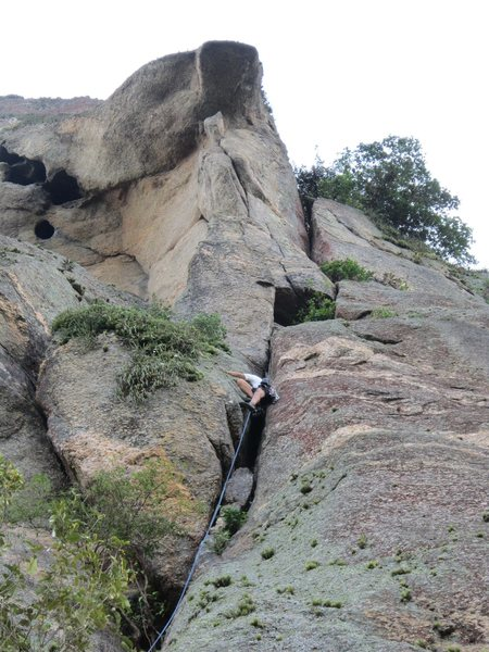 Rock Climbing Photo: Mingo leading the first pitch on Lagartao.