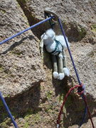 Rock Climbing Photo: Ewe STILL here?