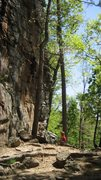 Rock Climbing Photo: African Herbman in some shade.