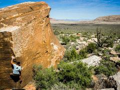 Rock Climbing Photo: The wonderful Bloodline (V5)