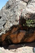 Rock Climbing Photo: Left Branch on Tree of Life Boulder.