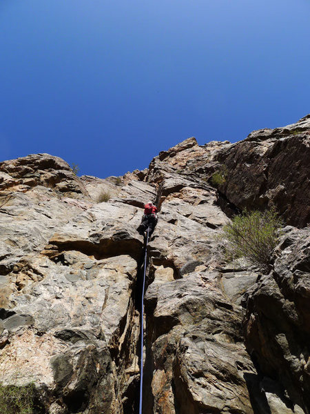 Rock Climbing Photo: Stephen on P1.