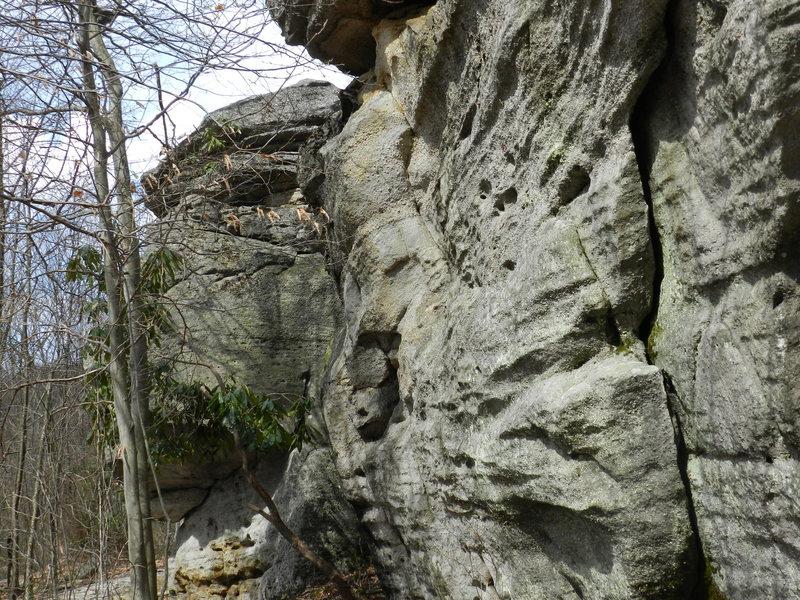 Downhill side of Bathroom Boulders.