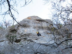 Rock Climbing Photo: Serica TR'ing on Fear of Falling?- Buda Belly Wall