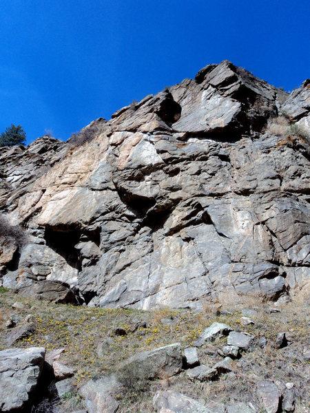 Rock Climbing Photo: Punk Rock.