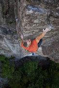 Rock Climbing Photo: Freddie Wilkinson on the crux dyno of Wild Life Ex...