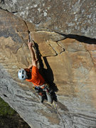 Rock Climbing Photo: BOTS