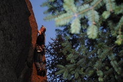 Rock Climbing Photo: Route variation.