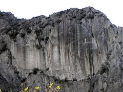 Rock Climbing Photo: This wall has seen a good amount of development si...