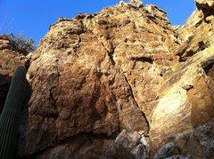 Rock Climbing Photo: Lower section of the Teenage Mutant Ninja Turtle C...