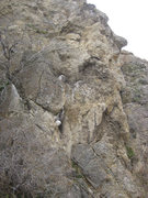 Rock Climbing Photo: The Log. Even this close up it blends right in to ...