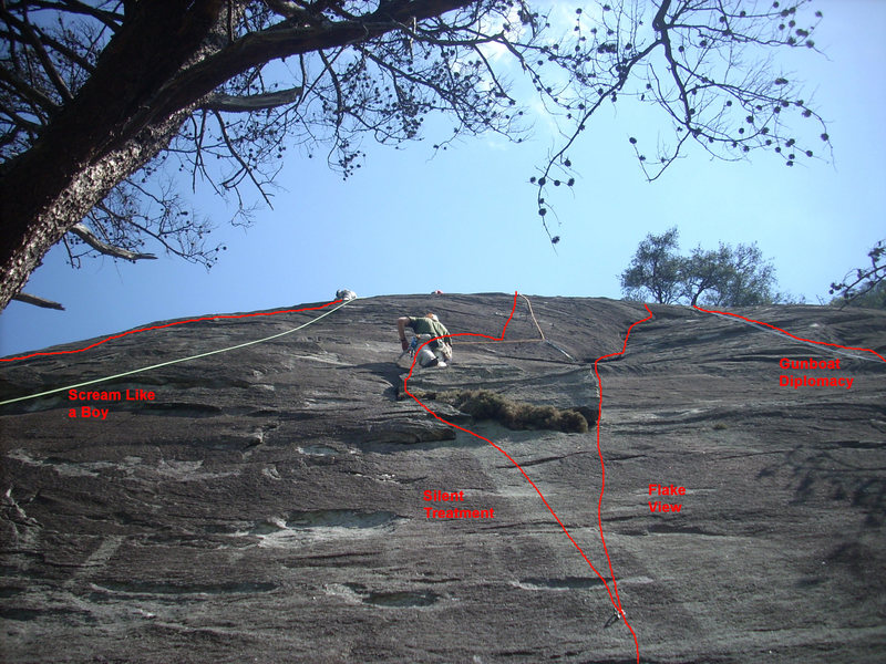 Rock Climbing Photo: Flakeview Area