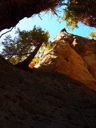 Rock Climbing Photo: Jizz on Sausage Party