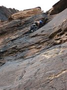 Rock Climbing Photo: Birdland