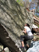 "Rock Climbing Photo: Sarene on the FA of ""Jack In The Pulpit""..."