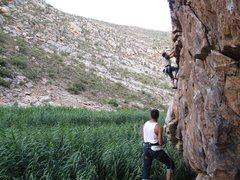Rock Climbing Photo: Montagu, South Africa, Jungle Gym Junkie