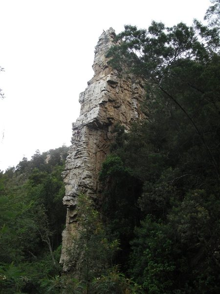 Rock Climbing Photo: Mithral in South Africa, Giant fin coming out of t...