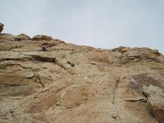 Rock Climbing Photo: Belay, top of P1.