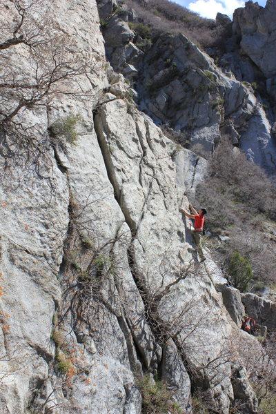 Rock Climbing Photo: ...That Funky Monkey!