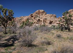 Rock Climbing Photo: Super Creeps Wall
