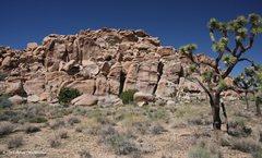 Rock Climbing Photo: Mel's Diner
