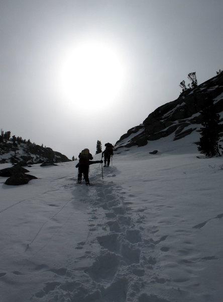 Rock Climbing Photo: steep soft snow below sam mack meadow, the palisad...
