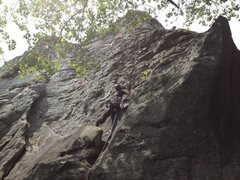 Rock Climbing Photo: Kimberly leading Knob Wall.