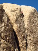 Rock Climbing Photo: Nelson Leading Rock-A-Lot