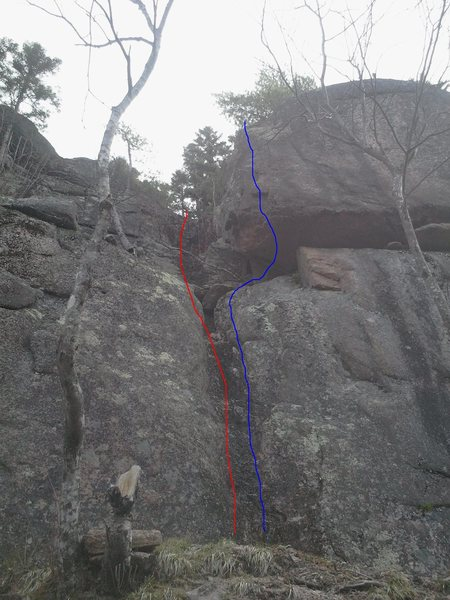 Rock Climbing Photo: red:Access Gully 5.1  Blue: Shake and brake 5.9 TR