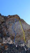 Rock Climbing Photo: The blue line.