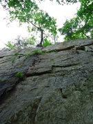 Rock Climbing Photo: crew leader 5.8