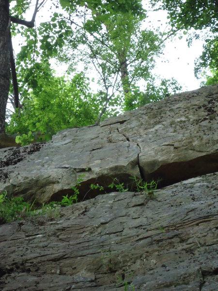Rock Climbing Photo: top of crew leader 5.8