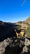 Rock Climbing Photo: Great view