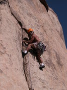 Rock Climbing Photo: Tony Moser Leading Pachyderms to Paradise