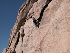 Rock Climbing Photo: Lisa Pritchett Hanging out on the tip of the Eleph...