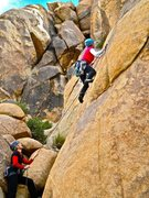 Rock Climbing Photo: Lisa Pritchett leading Bold is a Four Letter Word