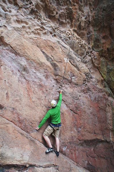 Rock Climbing Photo: Climber on Triceratops Tracks (5.10) on Dinosaur R...
