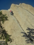 Rock Climbing Photo: Me on Jumping Jehosephat with Stan Su