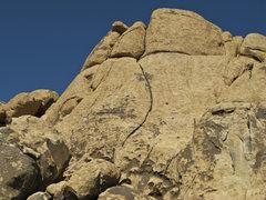 Rock Climbing Photo: Asian Fever Buttress