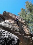 Rock Climbing Photo: Deb up near the top.