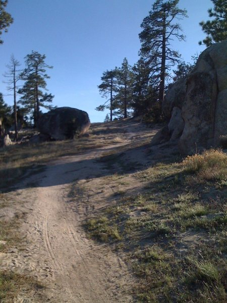 Easy Directions to the TR Wall.<br> Drive 1/4 mile past the camp ground to Rosenetta Saddle. Hike up the trail for about 1/2 mile and then make a left when you get to the first boulders you see. Follow the trail and it will put you at the top of the TR Wall. Walk down to the left or rap down.
