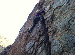 "Rock Climbing Photo: Kristina working ""Leonardo"" on TR at the..."