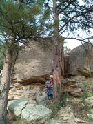 Rock Climbing Photo: The route is between the two pines.