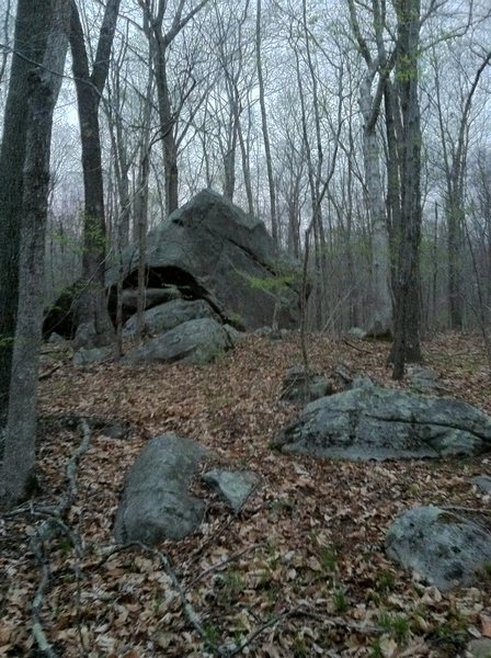 the boulder as it appears from the trail, coming from the north