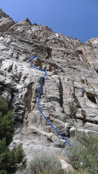 Rock Climbing Photo: Blue line.