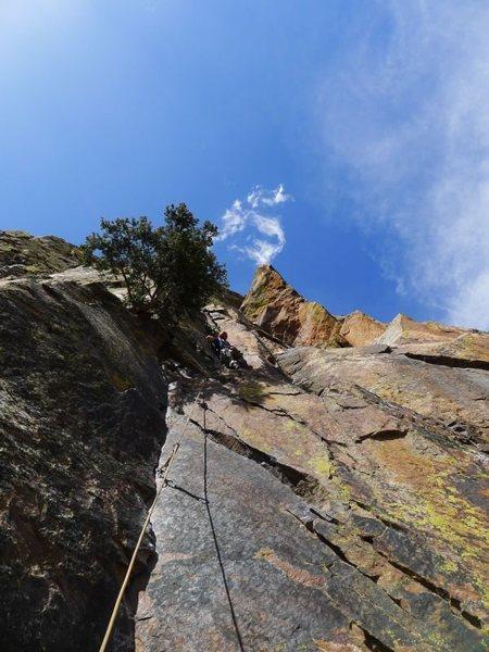 Rock Climbing Photo: Wade leading P1.