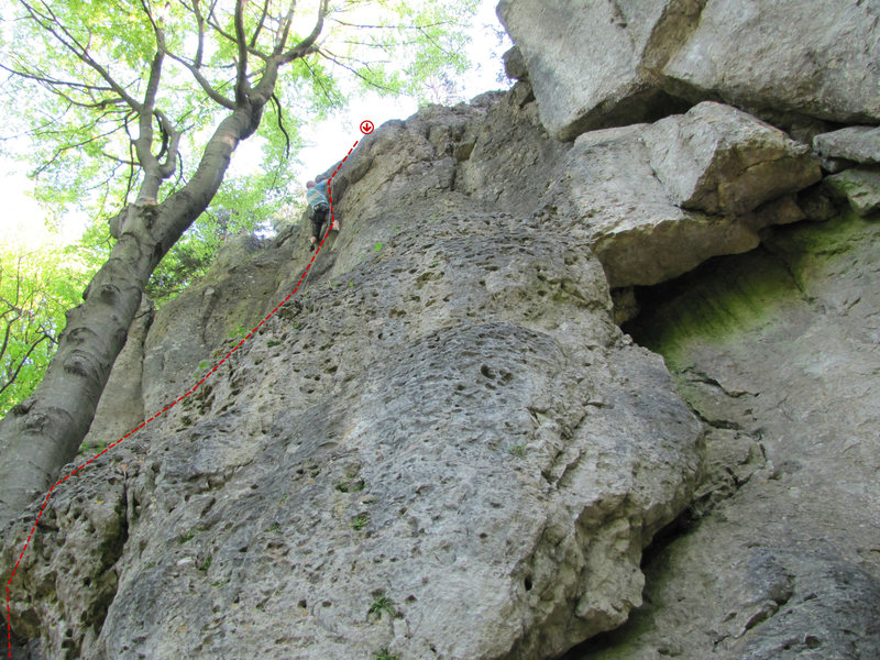 The route begins near this tree and heads up to where Aran is, then to the left of the little overhang and back right to the anchor.