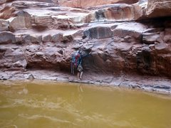 Rock Climbing Photo: Exploring Marble, and Rider Canyon. The water was ...