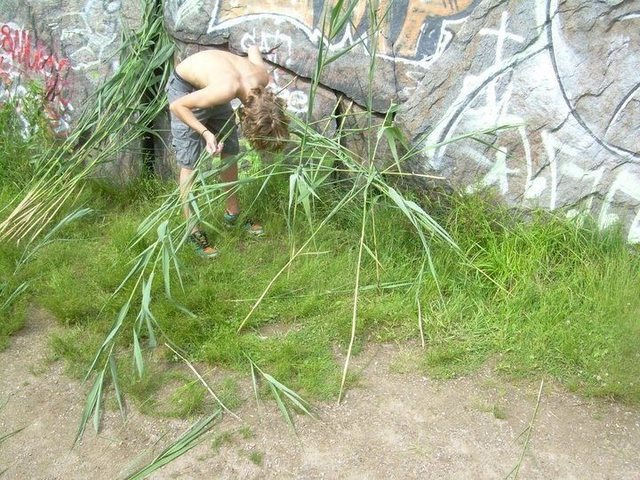 Rock Climbing Photo: Making a shelter out of reeds.
